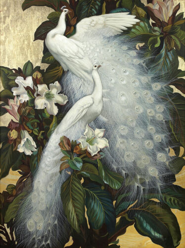 Wall art Canvas Print Oil Painting Picture Animal White peacock on canvas L872