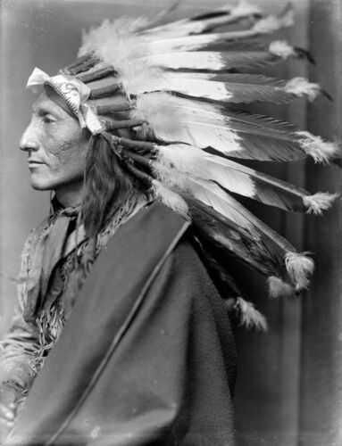 Whirling Horse, Sioux Indian, CHIEF, Headdress, Native American1900 Photo, 20x16
