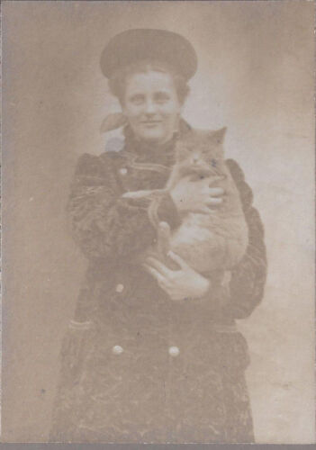 1900s CABINET PHOTO SMILING YOUNG LADY HOLDING LARGE GREY PET CAT