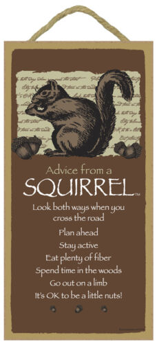 ADVICE FROM A SQUIRREL Wisdom WOOD SIGN wall hangng NOVELTY PLAQUE Animal USA