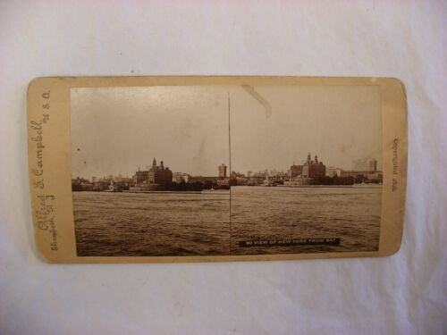 Antique Steroview Photo - Alfred - View from Bay New York NY