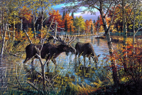 Two moose oil painting picture decor art printed on canvas L2439