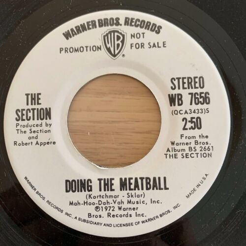 """The Section - Doing The Meatball / 7"""" Promo - TOP condition"""