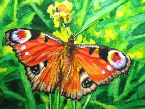 Watercolor Painting Beautiful Butterfly Insect Green Grass Nature ACEO Art