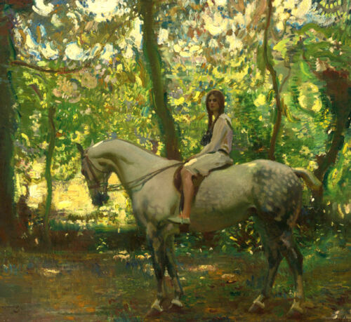 Girl on horseback Oil painting Wall art HD printed on canvas L1753