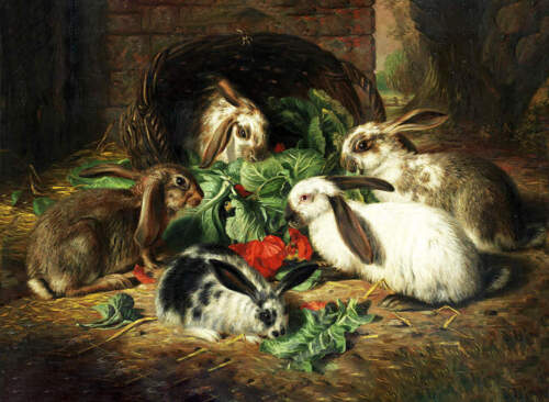 5 Bunny Rabbits by ALFRED RICHARDSON BARBER