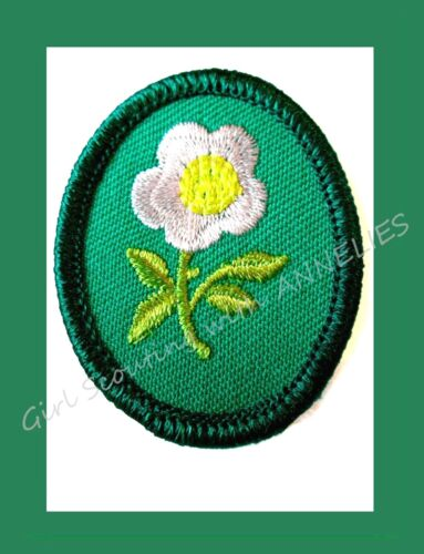 DOGWOOD Girl Scout TROOP CREST Tree Flower MINT 1990 Collectors NEW Multi=1 Ship