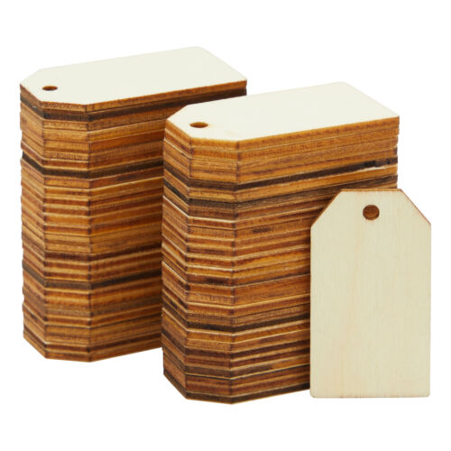 Unfinished Wood Tag, 60 Pcs Natural Rustic Wood Craft Labels Wooden Gift Tags