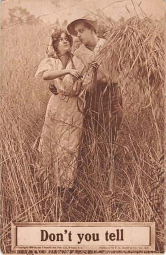 Lovers Meeting in a Hay Field - Don't You Tell - Old Comic Romantic Postcard