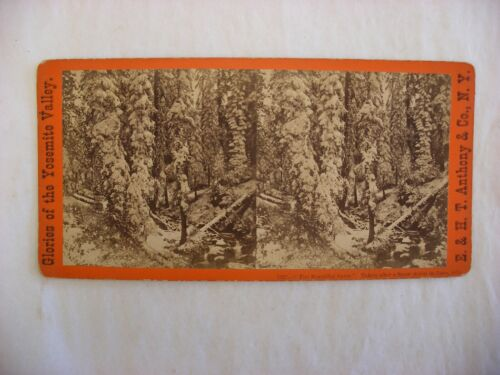 Stereo View Card - Yosemite Valley California E. & H. T. Anthony Co. 7327 #107