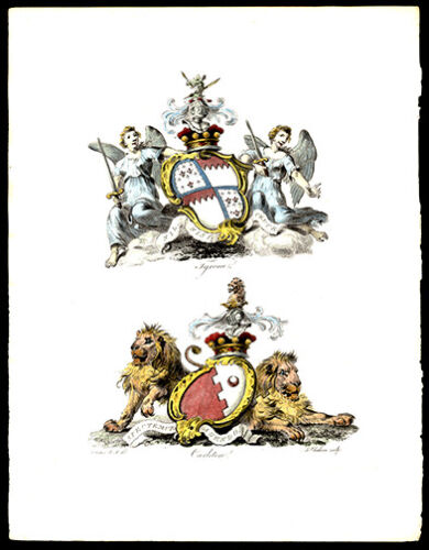 Tyrone & Carleton 1790  Catton Lithograph British Heraldry Coat of Arms