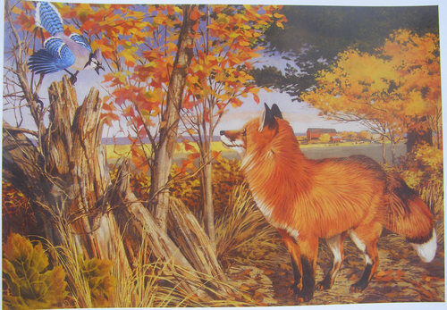 Fox and Bluejay Autumn Colors