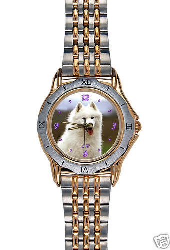 Montre Chien SAMOYEDE  -  Watch with SAMOYED DOG