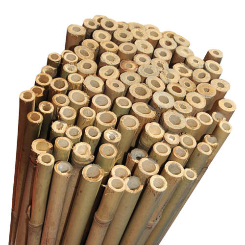 Strong Heavy Duty Professional Bamboo Plant Support Garden Canes | 2ft - 10ft