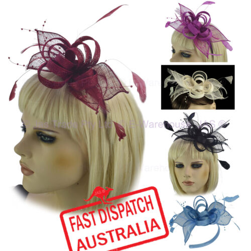 Melbourne Cup Spring Races Racing Carnival Feather Headband Clip Fascinator