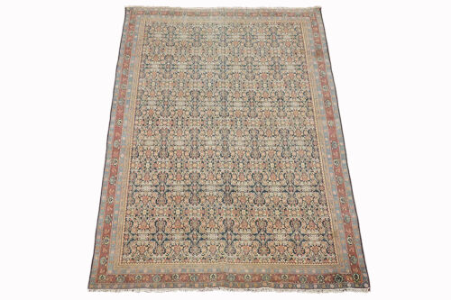 Antique 6X9 Agra Herati Rug Hand-Knotted Cotton Carpet, circa 1900 (5.9 x 8.7)