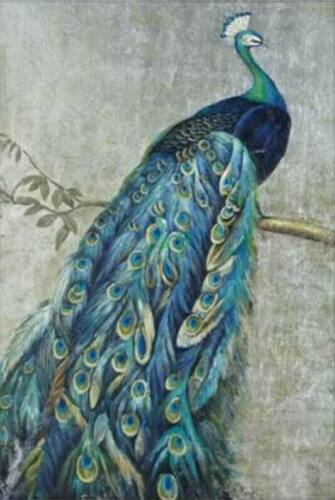 CHOP1235 fine peacock on branch handmade painted oil painting art on canvas
