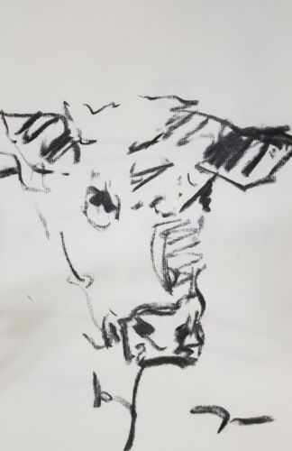 """JOSE TRUJILLO Original Charcoal on Paper Sketch Drawing 11X17"""" Cow Contemporary"""
