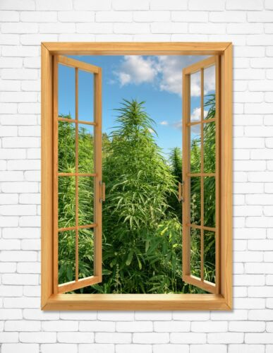 "Window View Cannabis Field Marijuana Weed Wall Art Decor 24""x36"" LARGE POSTER D"