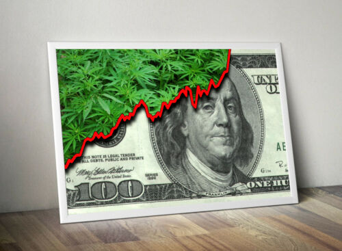 "Cannabis Money Marijuana Business Inspiration Home Wall Art 36""x24"" LARGE POSTER"