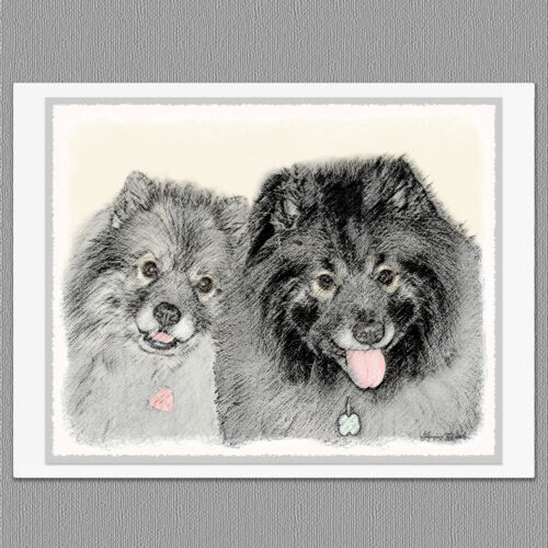Animals 6 Keeshond Portrait Dog Blank Art Note Greeting Cards