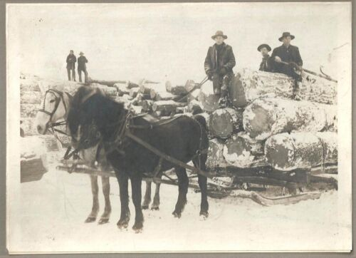 Cabinet Photo ~ Snow Covered, Horse Drawn Loaded Logging Sled/Wagon c1910-20