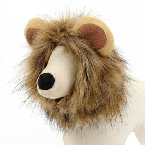 New Mighty Puppy Transfiguration Little Lion Hat For Dog Puppy Teddy Kitty Cat
