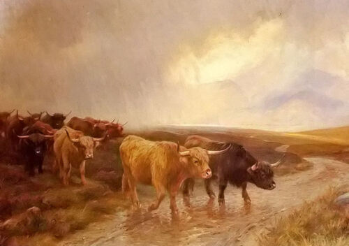 Oil painting wright Barker - highland cattle cows crossing the creek no framed