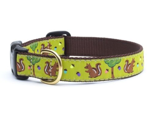 Dog Design Collar - Up Country - Made In USA - Nuts & Squirrels - Choose Size
