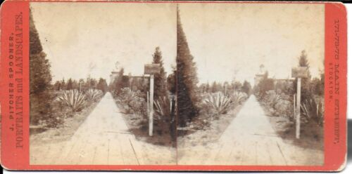 J Pitcher Spooner Stereoview Garden of State Hospital & Asylum 1880s Stockton CA
