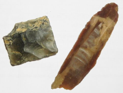 ZURQIEH -as6518- ANCIENT HOLY LAND, 10,000 YEARS OLD TWO FLINT STONE TOOLS