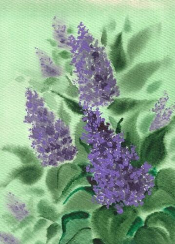 ACEO PRINT OF PAINTING LILAC BUSH RYTA FLOWER ART FINE GARDEN SPRING watercolor