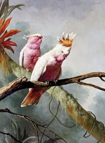 Oil painting jacques barraban - a pair of leadbeaters cockatoos in landscape art