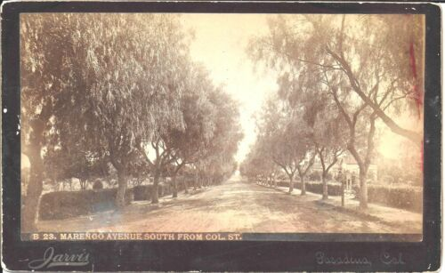 Ben Jarvis Cabinet Photo of Marengo Ave South from Colorado St Pasadena 1890s