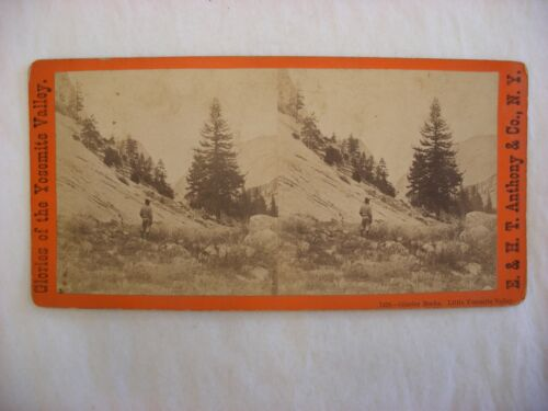 Stereo View Card - Yosemite Valley California E. & H. T. Anthony Co. 7428 #108