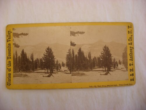 Stereo View Card - Yosemite Valley California E. & H. T. Anthony Co. 7416 #113