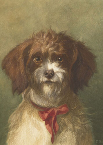 """high quality oil painting handpainted on canvas """"A lovely dog"""""""