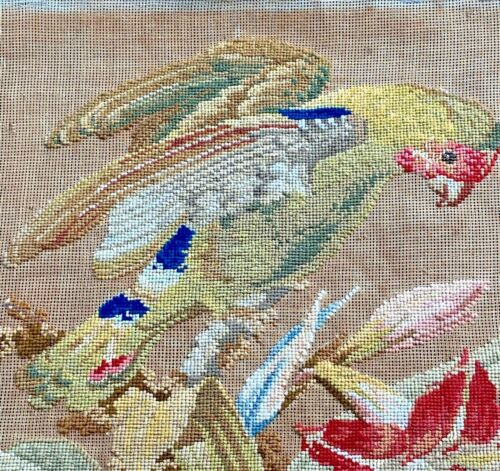 Antique 19th C Berlinwork Needlepoint with Flowers and Parrot  WW333