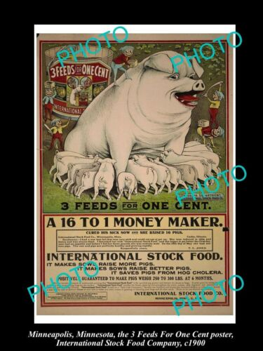 OLD 6 X 4 PHOTO OF MINNEAPOLIS STOCK Co POSTER PIG FOOD 3in1 STOCK FOOD c1900 2