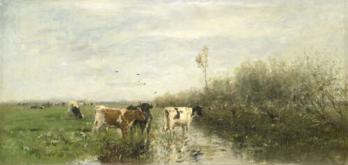 """high quality oil painting 100% handpainted on canvas """"cows in a muddy field  """""""