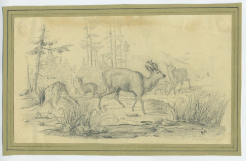 19th Century Pencil Drawing Of 3 Deer Signed Rudolph Ra