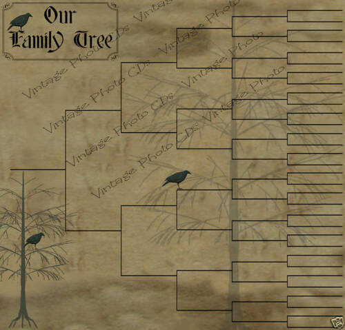 Primitive Family Tree Chart - 6 Generations - Crows