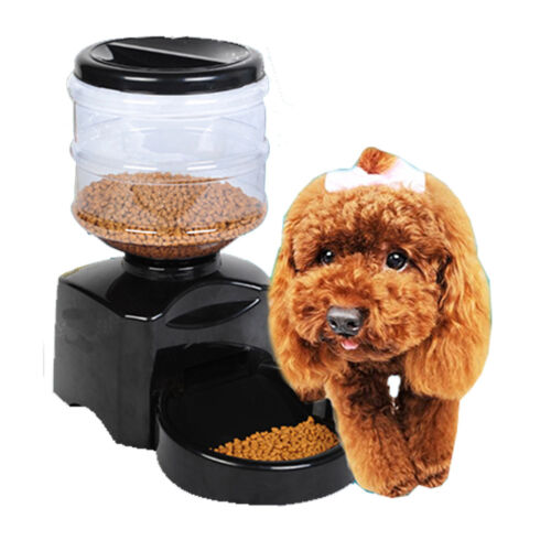 5.5L Automatic LCD Display Pet Feeder with Recording & Timing Functions