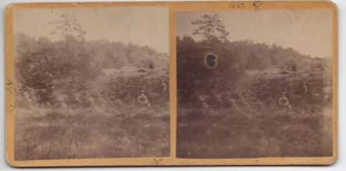 1880s Stereoview of Children in Field w/ Cow in Rico Colorado