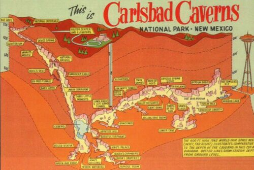 Map of Carlsbad Caverns National Park New Mexico, Compare Space Needle, Postcard