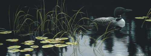 Robert BATEMAN Lily Pads And Loon Limited Edition Giclee Canvas COA art