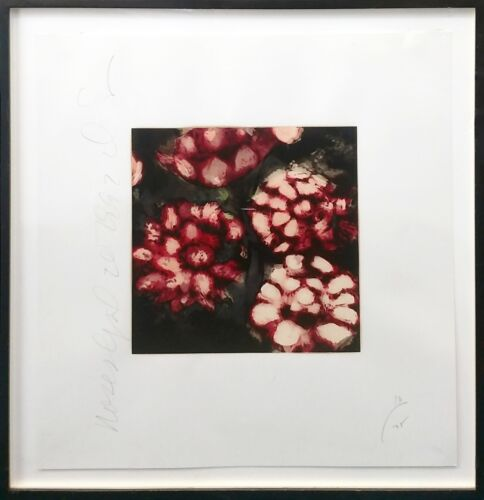 "DONALD SULTAN ""ROSES"" 1992 