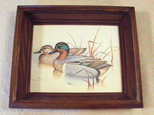 """Gregory F Messier Litho Print Duck Picture Wall Art 13"""" x 11"""" Deep Wood Frame"""